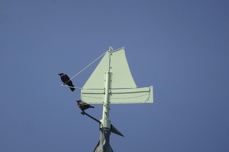 Der Windrichtungsanzeiger auf der Kirchturmspitze der Helgländer St. Nicolai Kirche in Form einer Schaluppe.