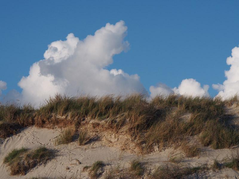 Düne-Landschaft mit blauem Himmel und weißen Wolken.